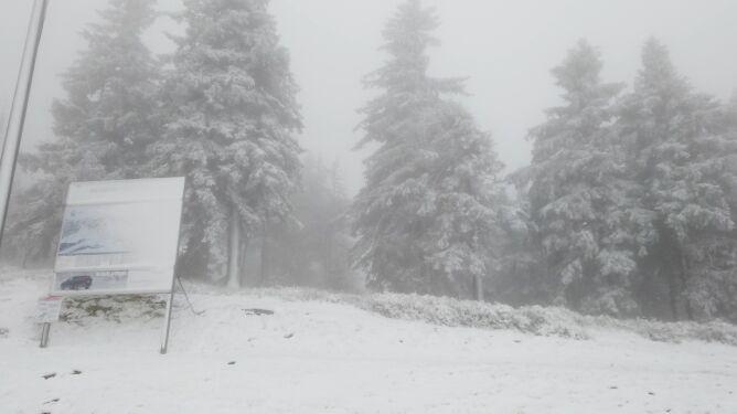 Zabieliły się stoki w Zieleńcu, pierwszy śnieg w Beskidach